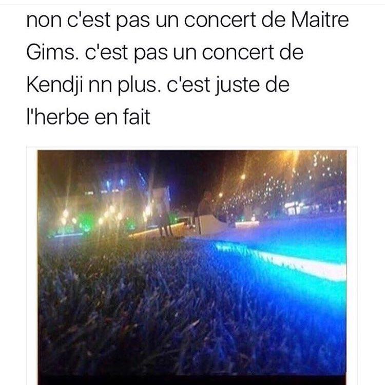 non c est pas un concert de maitre gims, c est pas un concert de kendji non plus, c est juste de l herbe en fait, meme