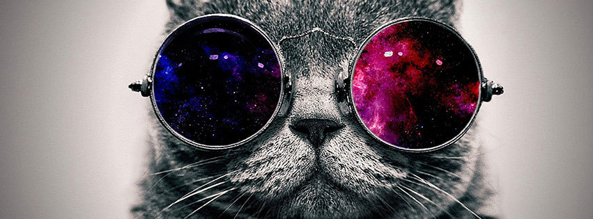 couverture facebook, facebook cover, chat swag, lunettes rondes, cat