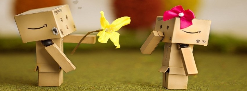 danbo, couple, mignon, cute, offrir une fleur, couverture facebook, facebook cover
